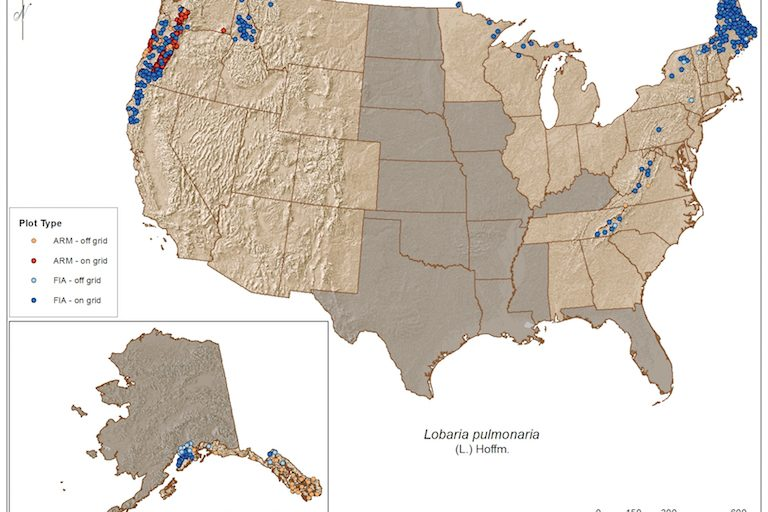 A map of all 6,156 lichen survey sites that will be included in the U.S. Forest Service's forthcoming database and atlas. The gap in the middle represents areas that the Forest Service was not funded to survey, largely places with no forest. Map courtesy of the U.S. Forest Service.