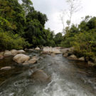 Meet the activists risking life and limb to protect rivers (commentary)