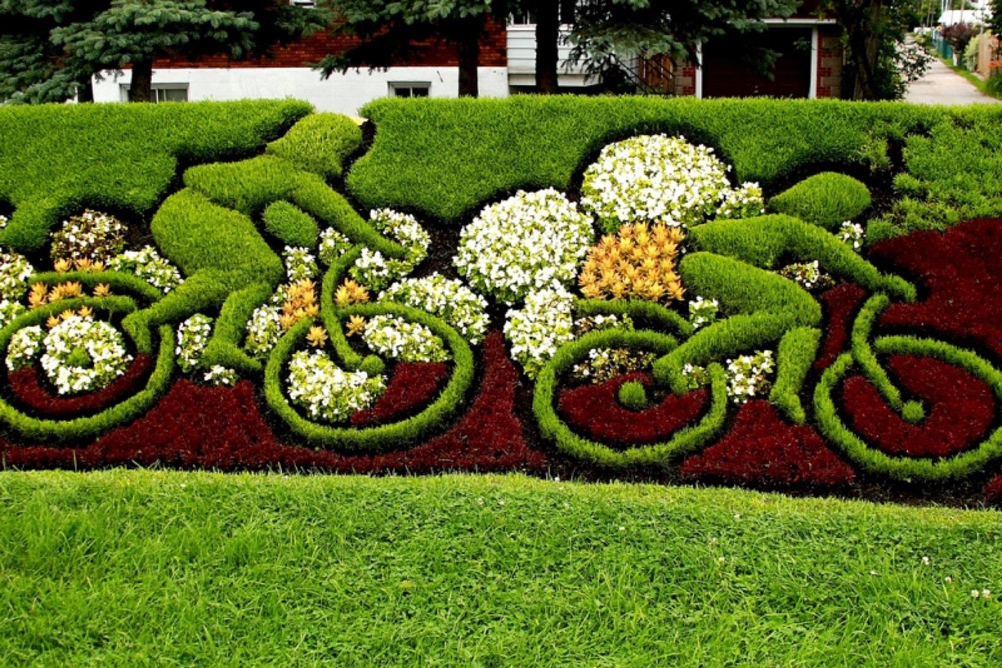 ethiopia u0027s first botanic garden aims to preserve country u0027s flora