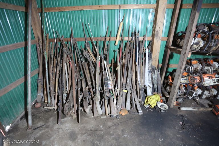Confiscated guns, snares and chainsaws in Cambodia. Photo by Rhett A. Butler.