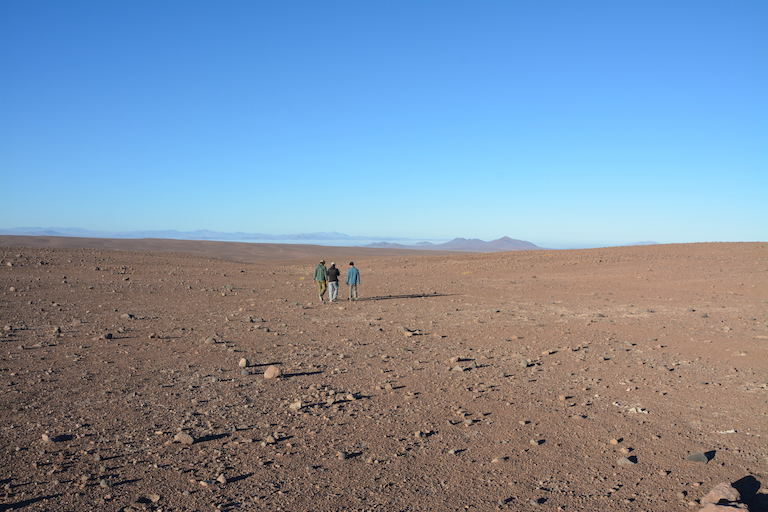 The Chilean team searches the Atacama Desert for signs of ringed storm-petrel nests. Photo by Filipe de Groote.