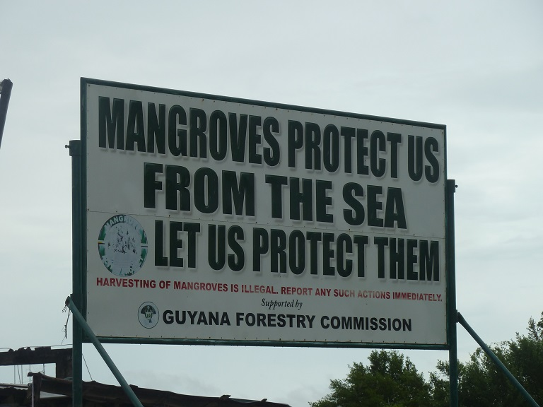 Mangrove sign in Hope, Guyana (just past Victoria and Cove and John). Photo by Carinya Sharples for Mongabay.