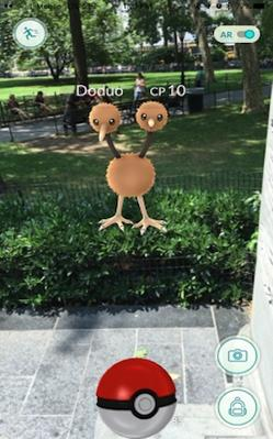 A Pokémon Go screenshot showing Doduo character superimposed on a city park.