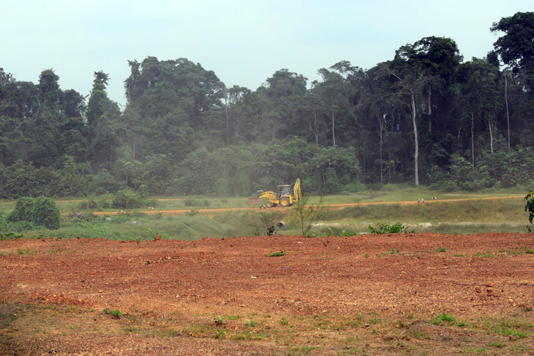 A bulldozer near Olam's new palm oil mill in Mouila, Gabon. Courtesy of Mighty.