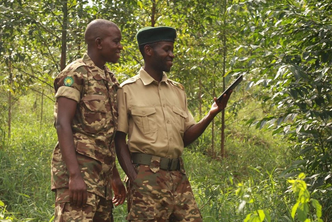 Uganda Wildlife Authority rangers learning to validate forest loss on the ground using GPS and Open Data Kit