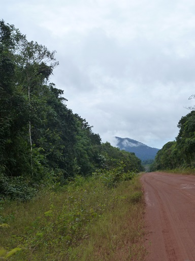 Part of the road in Guyana. Photo by Carinya Sharples/Mongabay.