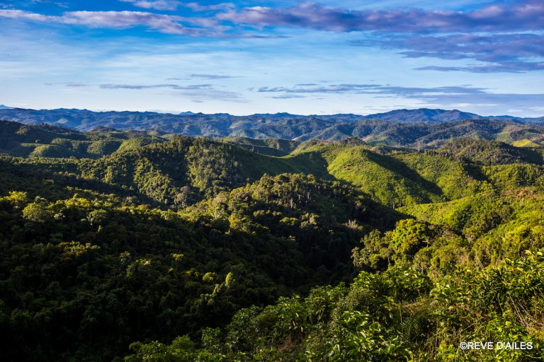 A view of the Ampasindava protected area, taken from Andranomatavy Mountain. Photo by Rêve d'Ailes photographie.