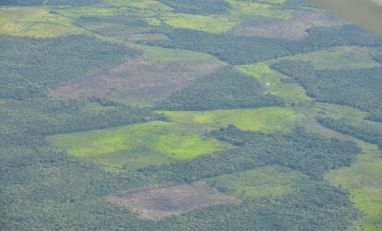 Guaviare is one of the departments in Colombia that is most affected by deforestation. Photo courtesy of the Colombian Air Force