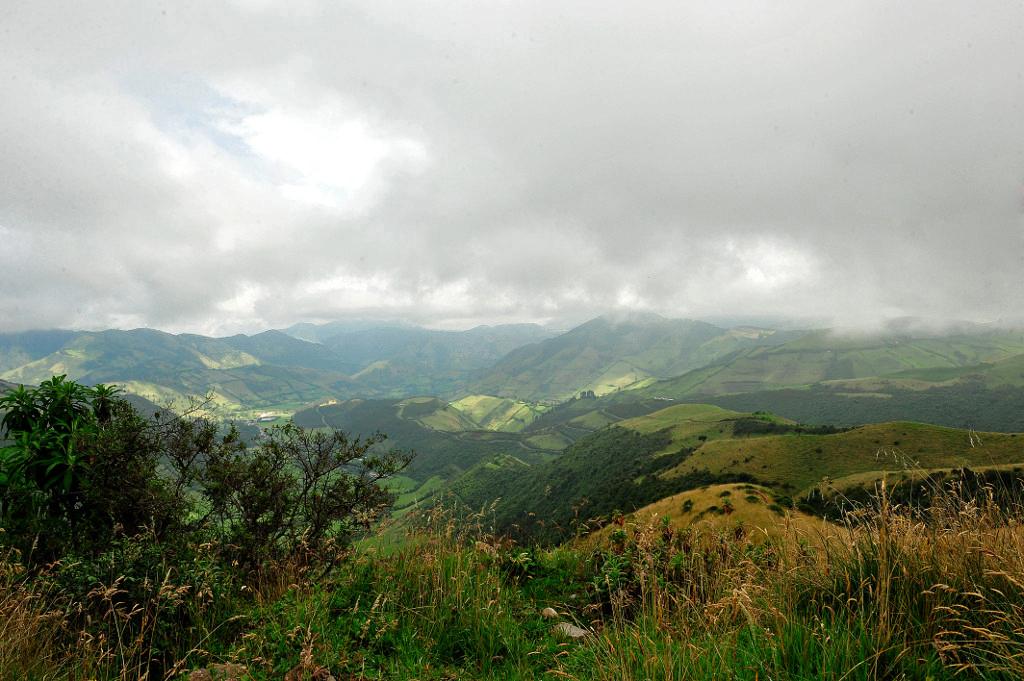 xJulie-Larsen-Maher_6938_Daytime-Landscape-Cloud-Forest_ECU_11-25-08