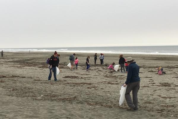 International Coastal Cleanup volunteers collect beach debris