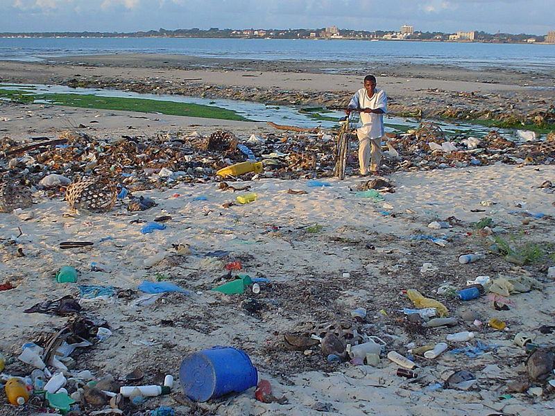 A beach at Msasani Bay Dar es Salaam, Tanzania shows the extent of mainly-plastic marine debris littering the world's beaches