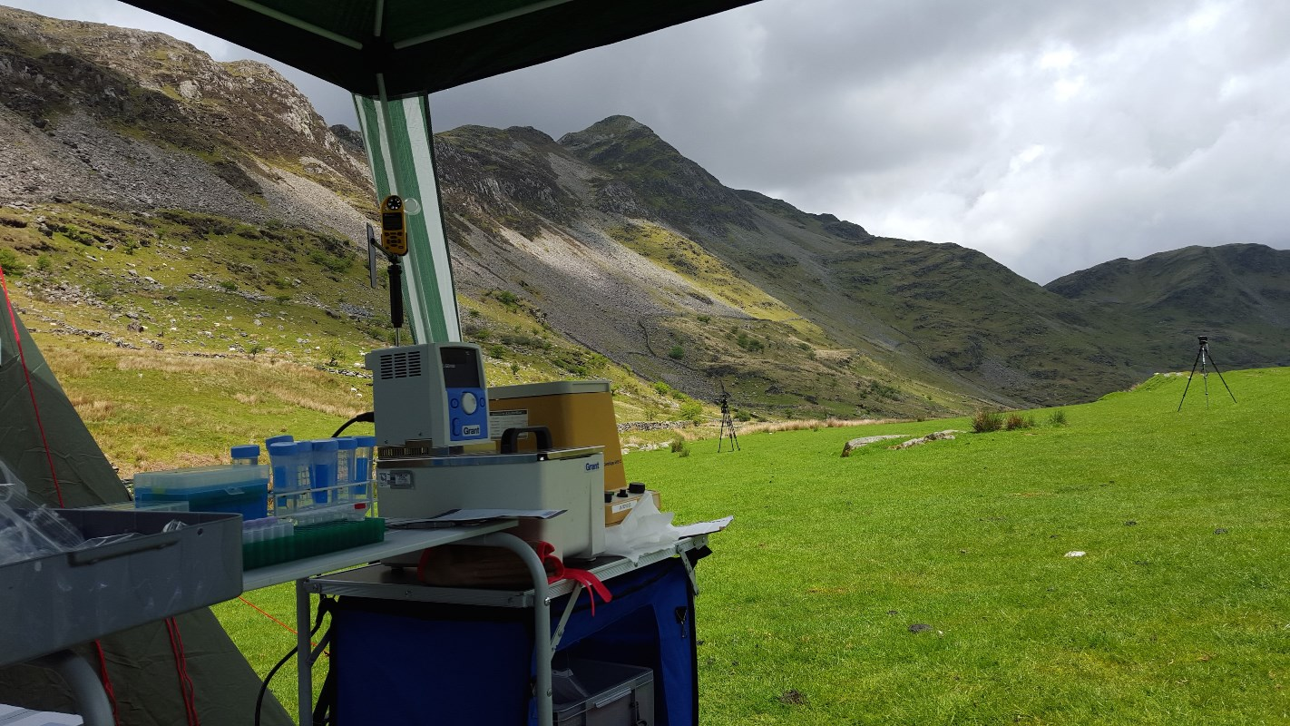 DNA sequencing equipment in the field lab in Snowdownia National Park in Wales, U.K..