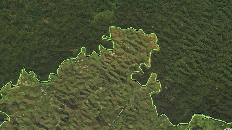 The southern boundary of Zahamena National Park in northeastern Madagascar shows how closely deforestation follows the park's perimeter. Photo courtesy of World Resources Institute.