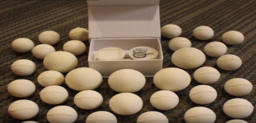 The 3D-printed artificial eggs resemble the soft and pliable feel of real sea turtle eggs.
