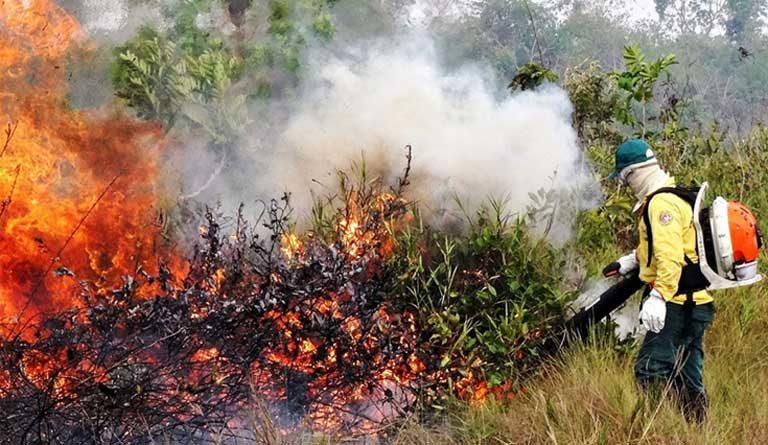 Número Recorde De Incêndios Na Amazônia Choca Cientistas