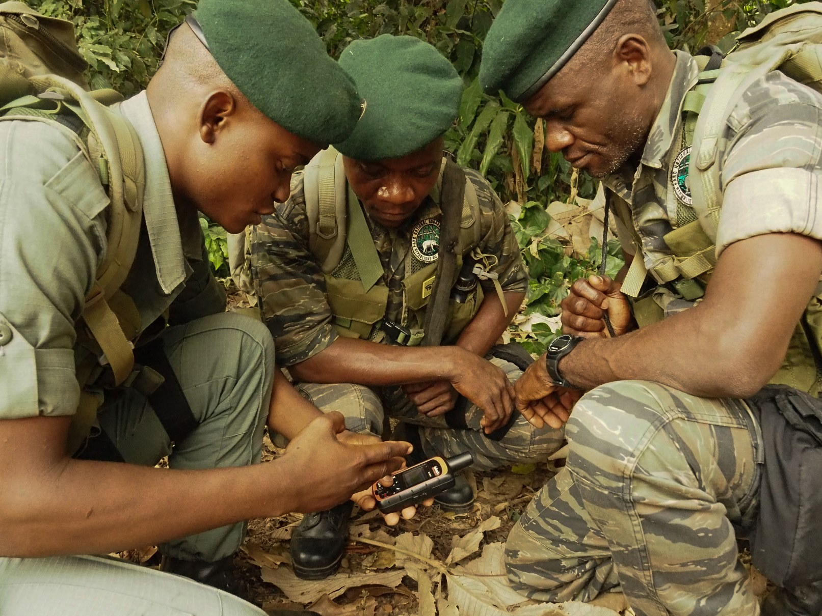 Patrols in the Congo determine their location.
