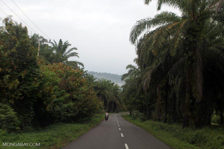 west-papua_6052