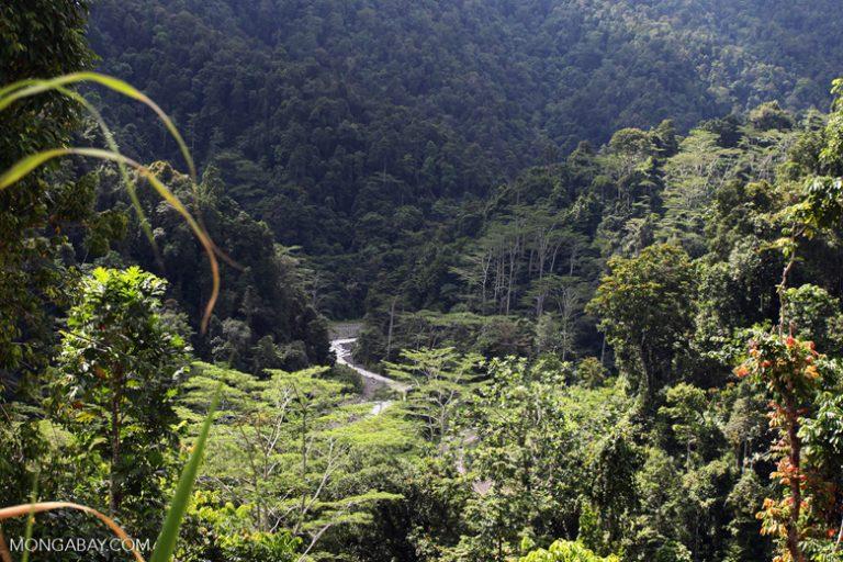 west-papua_0619