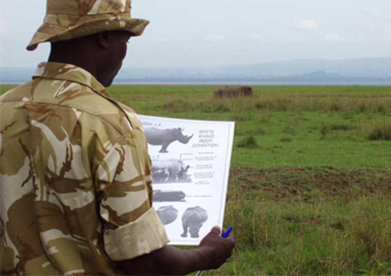 Trump budget undercuts us commitment to global wildlife conservation a us fish and wildlife service white rhino monitoring program in nakuru national park kenya photo by karl stromayer usfws sciox Image collections