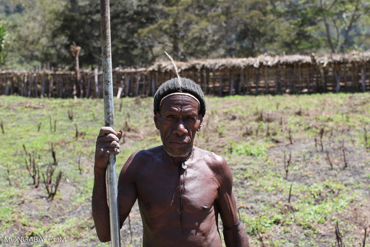 Dani man in Indonesian papua. Photo by Rhett A. Butler.