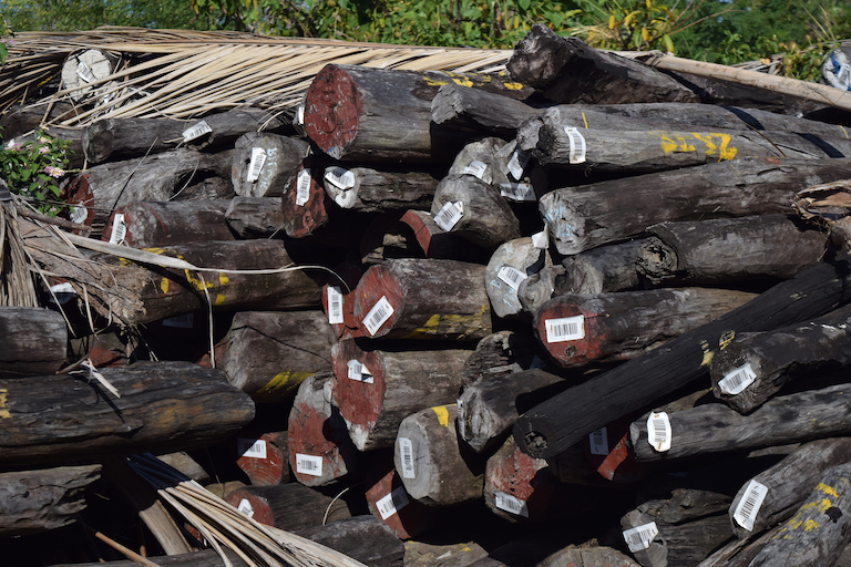 The government's rosewood stockpile in Antalaha, one of the biggest in the country. Photo by Dan Ashby and Lucy Taylor for Mongabay.