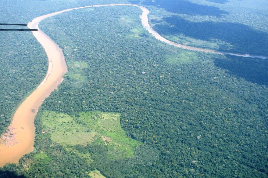 Western Amazon rainforest in Madre de Dios, Peru with small clearings that typically begin near rivers.