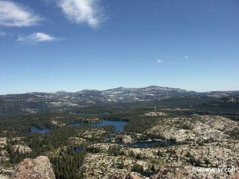 The Sierra Nevadas in California. Photo by Rhett A. Butler.