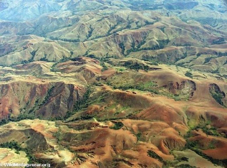 Erosion from deforestation in Madagascar. Photo by Rhett A. Butler.
