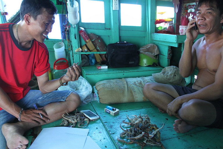 Fishermen check their seahorse haul. This boat had over 200 on board. Photo by Allison Stocks/ Project Seahorse.