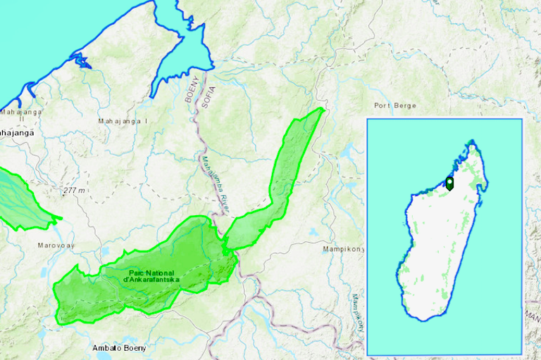 Map shows Bongolava Forest Corridor (unlabeled) and the adjacent Ankarafantsika National Park in green. Inset shows the protected areas' location in Madagascar. Maps courtesy of ArcGIS.