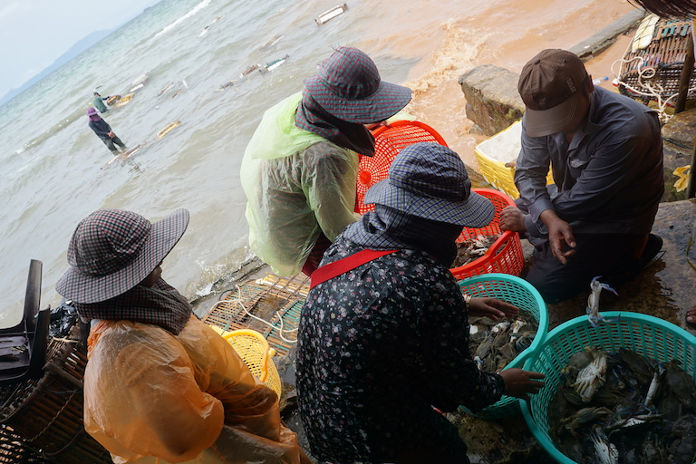 Crab sellers sort their wares at Phsar Kdam in Kep. The size of individual crabs is decreasing as the species and its habitats face increasing pressure, but sellers say they are beholden to demand and will not stop harvesting. Photo by Matt Blomberg.