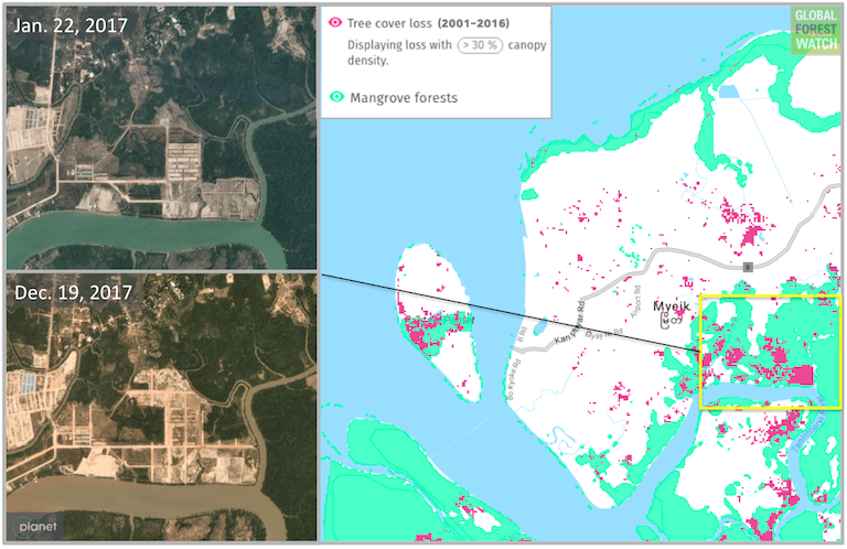 Data source: Hansen/UMD/Google/USGS/NASA, accessed through Global Forest Watch. Satellite imagery from Planet Labs.
