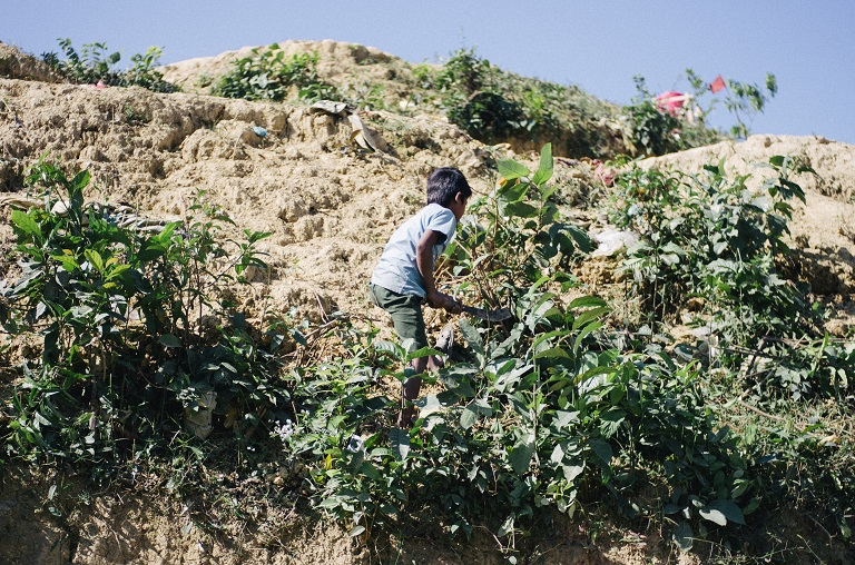 A young Rohingya boy hacks at roots on a hill inside the Kutupalong-Balukhali refugee camp to gather what remains for use as fuel. Photo by Kaamil Ahmed/Mongabay.