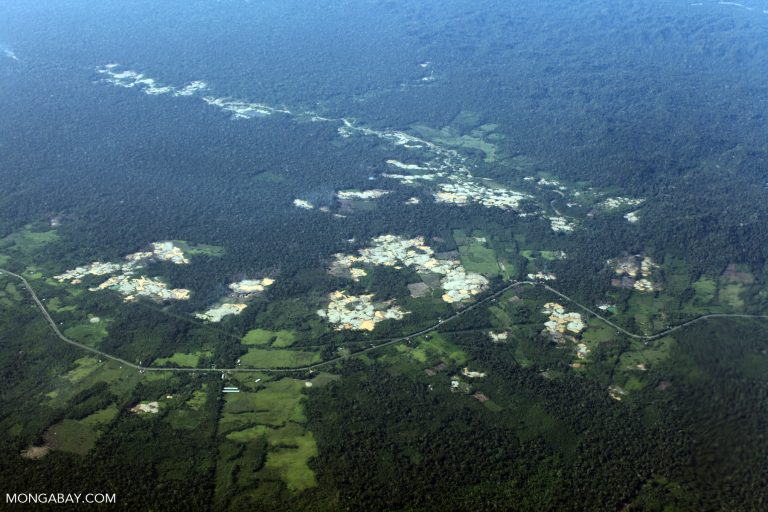 680000 acres of Amazon rainforest may be lost to Peru's new roads