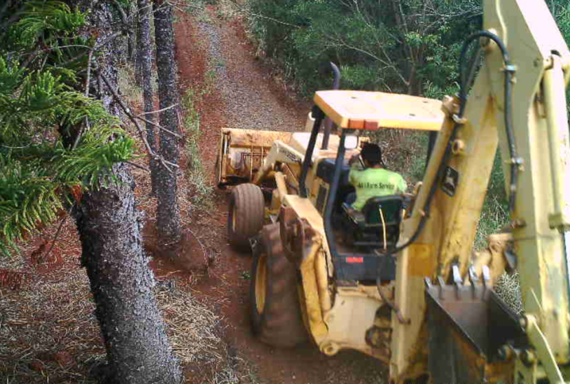 Photographic evidence of a man driving a bulldozer into a nature reserve. He plowed down an endangered tree and was identified and subsequently apprehended by police.