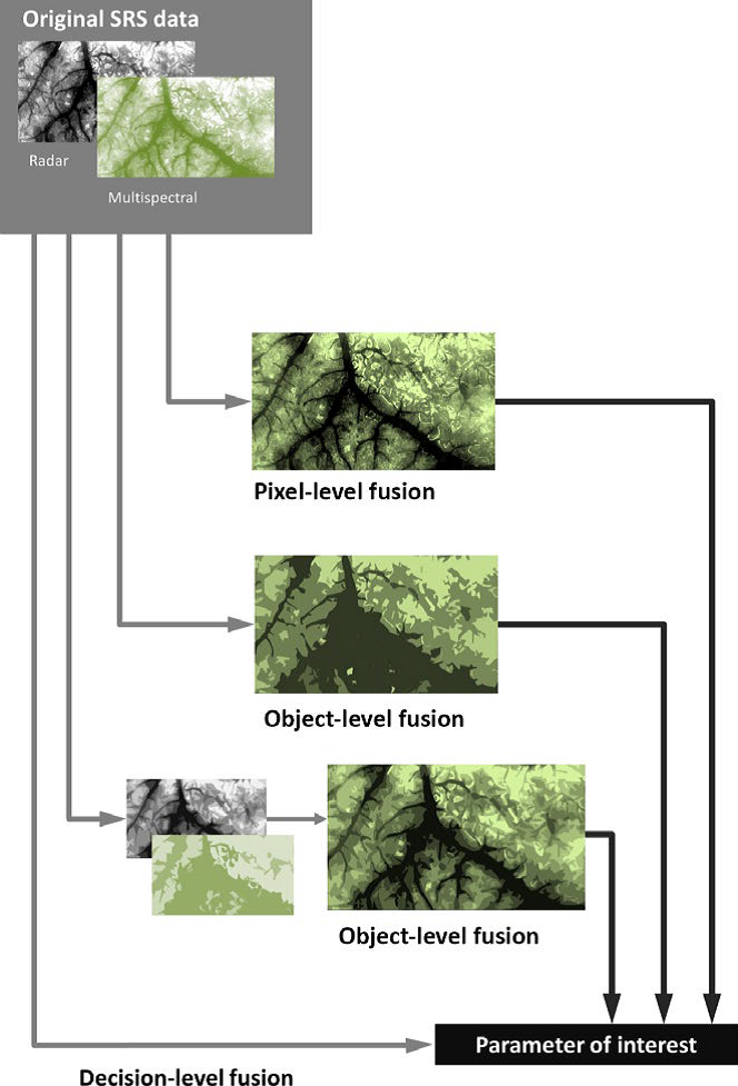 An overview of multispectral-radar SRS data fusion techniques (in text above) to predict either a categorical variable, like land cover, or a continuous variable, like species richness. In pixel-level fusion, the original pixel values of radar and multispectral imagery are combined to yield new, derived pixel values. Object-based fusion refers to (1) inputting radar and multispectral imagery into an object-based image segmentation algorithm, or (2) segmenting each type of imagery  separately before combining them. Finally, decision-level fusion refers to quantitatively combining multispectral and radar imagery in a predictive model or classification algorithm to derive the parameter of interest.