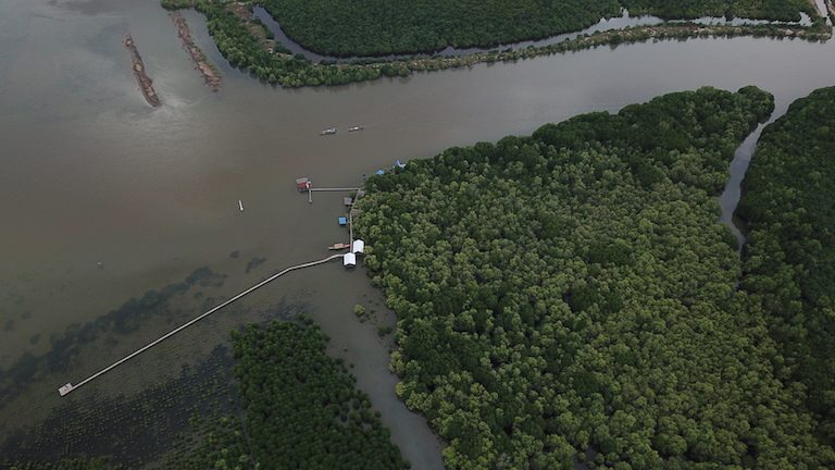 The Kampot Mangrove Forest's propagation facility at the mouth of Trapeang Sangke inlet. Photo courtesy of SUP Asia.