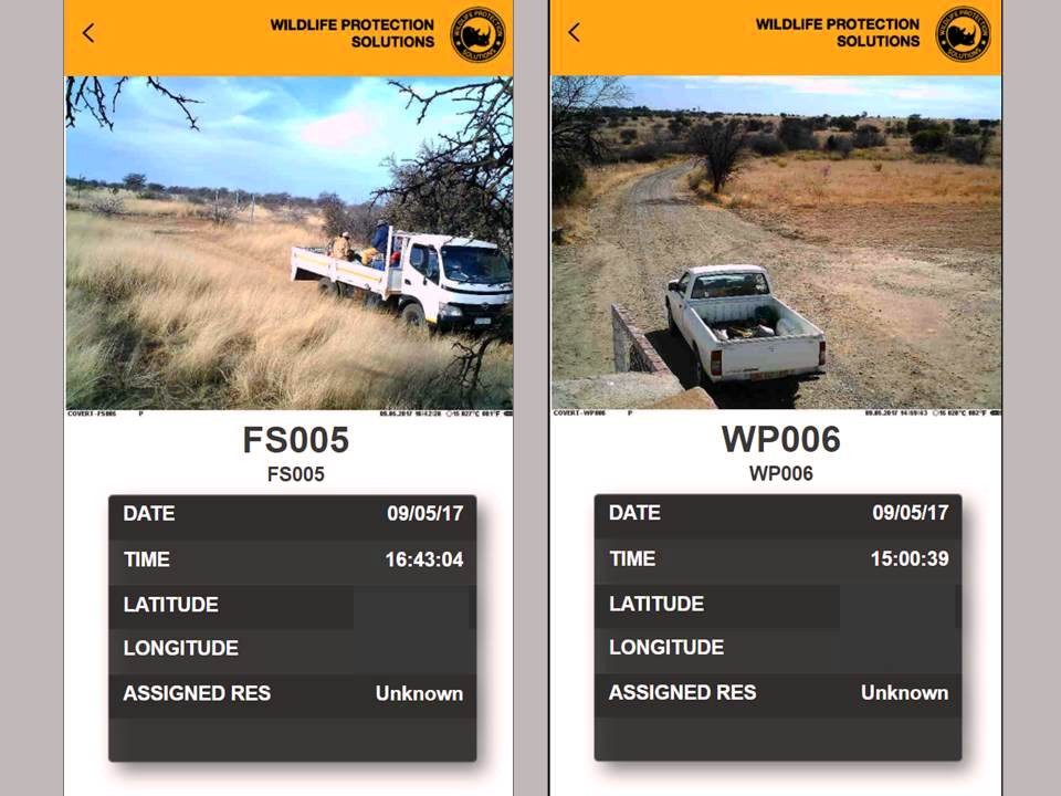 A pair of screenshots from the wpsWatch app show how the camera traps assist management with human activity.  The photo on the left of employees traveling within a nature reserve shows how managers can directly monitor staff locations and activity when needed. The photo on the right shows activity at a gate, as part of that reserve's managers effort to monitor incoming and outgoing traffic.