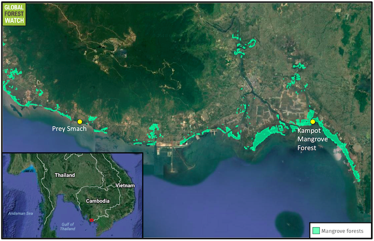 Map shows the roughly 25-kilometer (15.5 mile) stretch of Cambodian coastline between Kampot Mangrove Forest and the fishing village of Prey Smach where at least six large scale developments are planned. Mangrove forests are shown in bright green. Main map courtesy of Global Mangrove Watch; inset map courtesy of Google Maps.