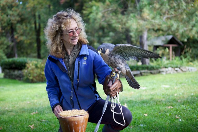 Audio: Exploring the minds and inner lives of animals