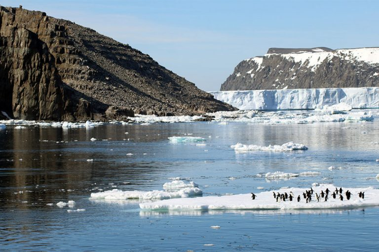 Because the Danger Islands have a large number of Adélie penguins and are likely to remain an important breeding location for penguins under projected climate change, the researchers say they deserve special consideration in the negotiation and design of Marine Protected Areas in the region. Credit: Michael Polito, © Louisiana State University