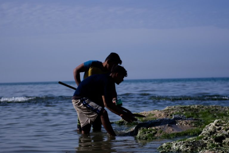 Palestinian bedouin in Gaza Valley dig for worms in the polluted shallow waters on Gaza's coast to use for fishing. Photo by Kaamil Ahmed/Mongabay.