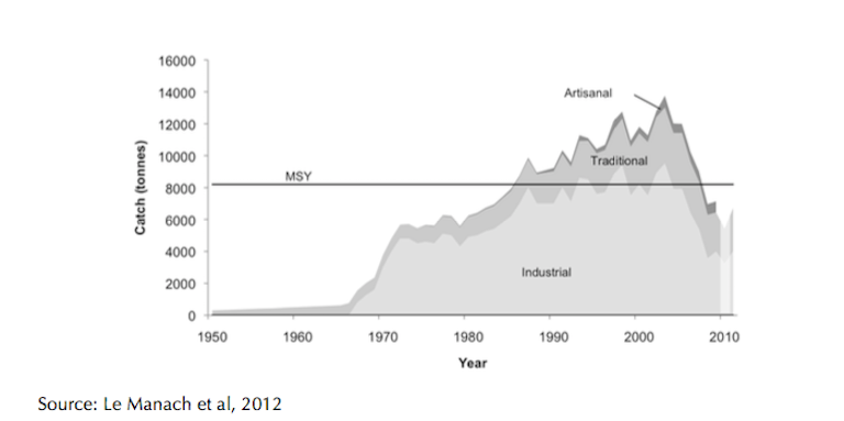 Madagascar landings of shrimp since 1950 compared to the maximum sustainable yield (MSY), as calculated in 2009. The shrimp catch underwent a sharp crash in the mid-2000s from which it has yet to recover. Chart courtesy of Frederic Le Manach.