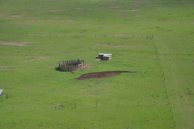 The key threat to the Maasai Mara ecosystem comes from land fragmentation, particularly the fencing off of individual plots of land, which has spread rapidly in recent years. Photo Credit: Nicholas Lapham