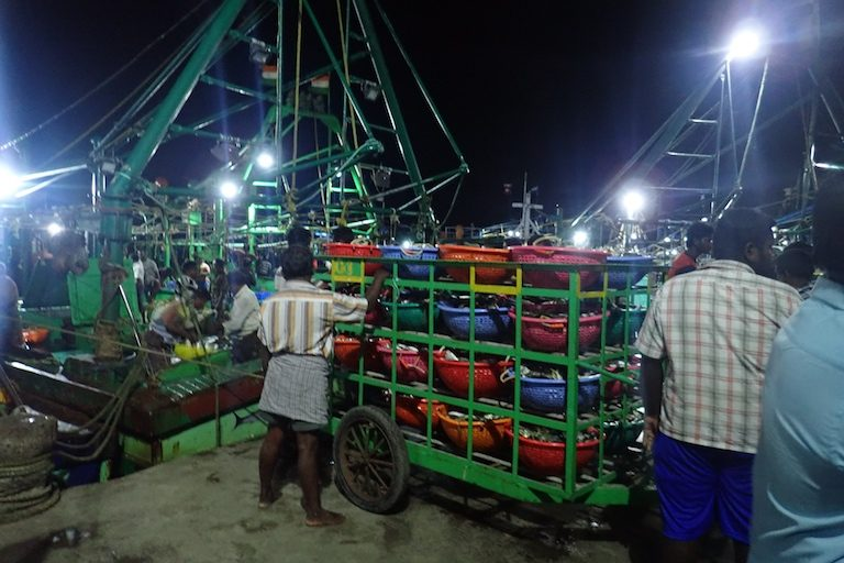 A trawler, returning from a day-long fishing trip for whatever marine life it could catch, offloads the portion of its catch that can be sold by species in Tuticorin, Tamil Nadu, India. Photo by Amanda Vincent/Project Seahorse.