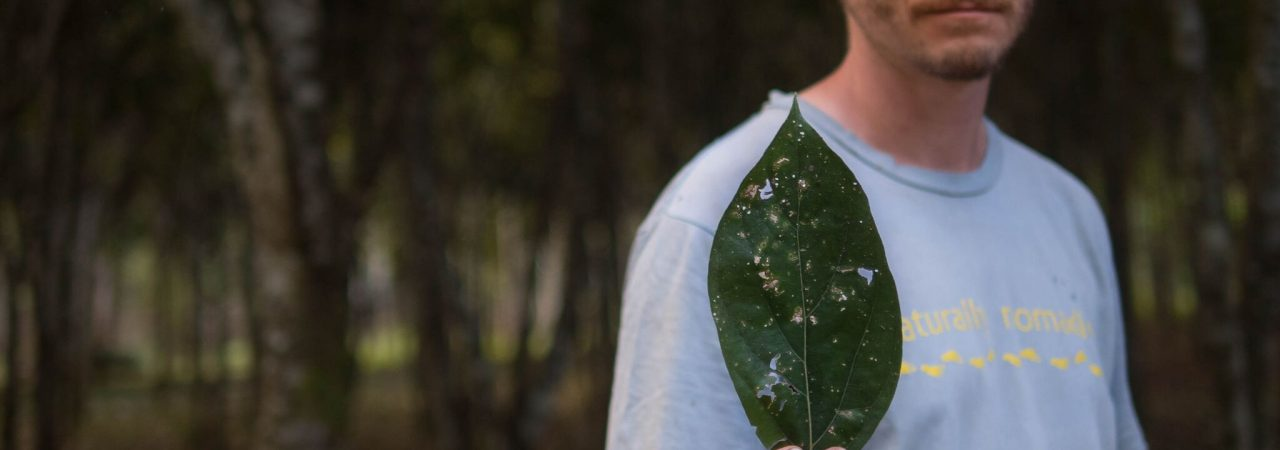 Founder of Camino Verde, Robin Van Loon, holding a leaf from a Moena tree. Photo courtesy Shahrzade Ehya.
