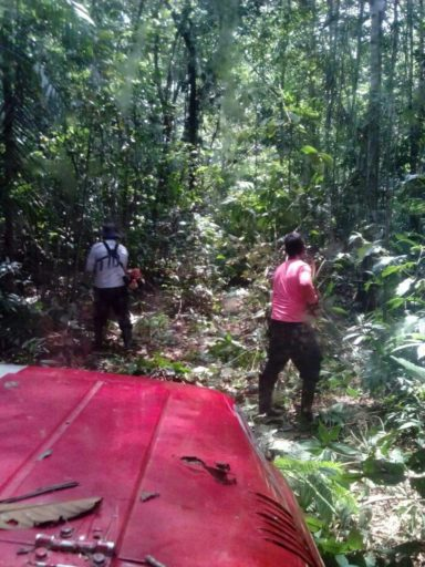 Two illegal loggers clear a path in order to pass through using a jungle vehicle. Photo by Jorge Suárez.