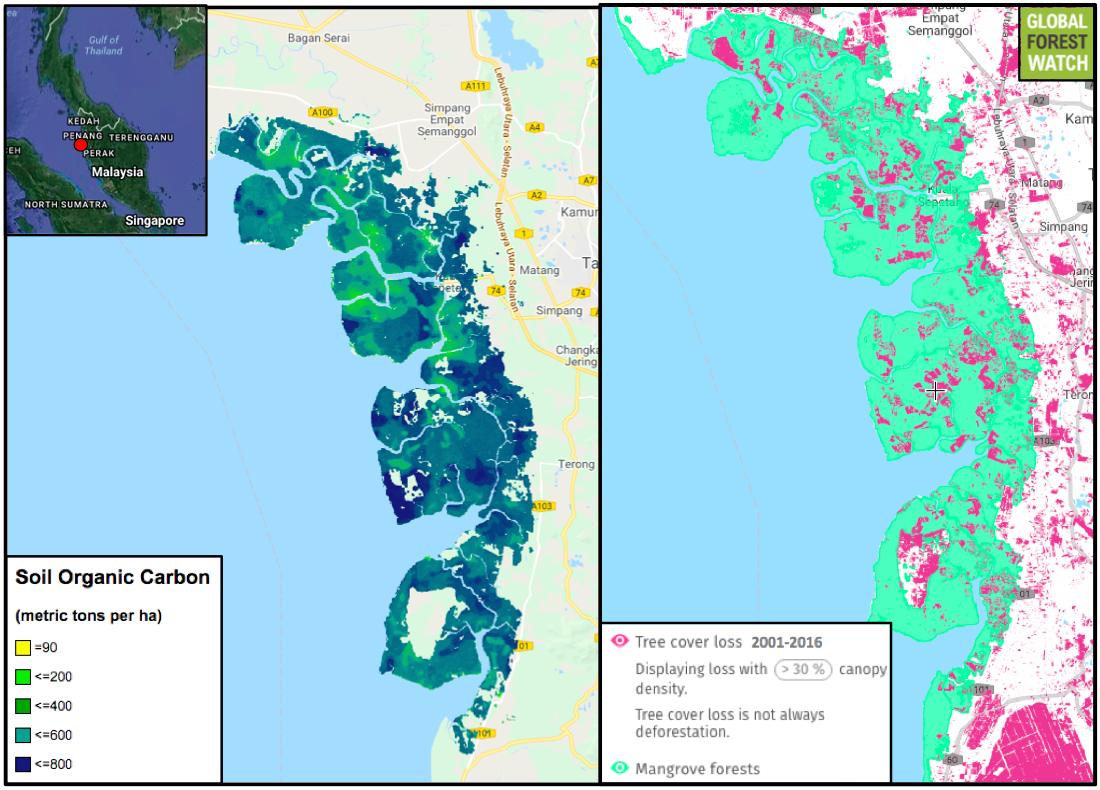 0502-mala-mangrove-map