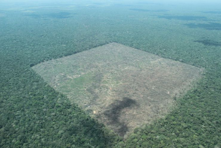 The deforestation in the Colombian Amazon continues. Photo courtesy of PNN-IDEAM-CDA-Corpoamazonía Flyovers.