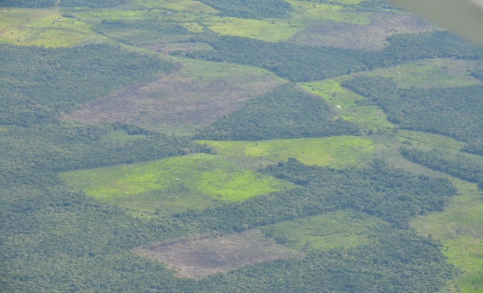 Guaviare is one of Colombia's departments most affected by deforestation. Photo courtesy of the Colombian Air Force.